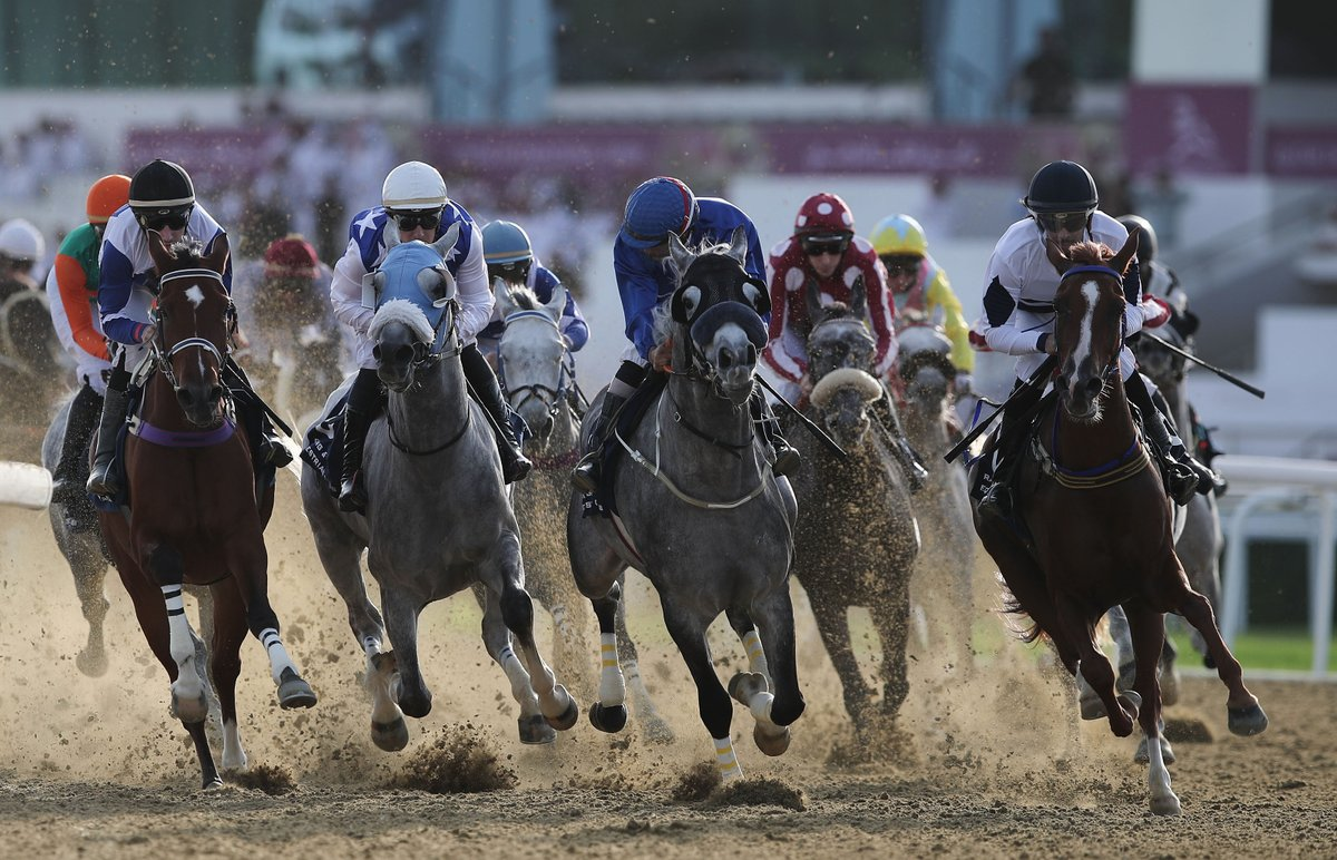 Watch live races now . بث مباشر http://qrec.gov.qa 25th Race Meeting - Marmi Cup  #DohaQatar   #الدوحة_قطر   #QREC #Q_rec #Jockeypic.twitter.com/eSYJ2a72gW
