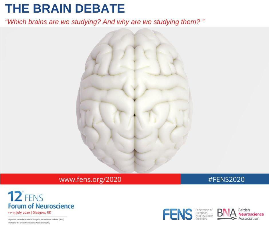 IBRO President @TheBaleLab will take part in the first ever #FENS2020 Brain Debate! Come join her and the other fabulous speakers to help tackle some of the most important issues in neuroscience today.