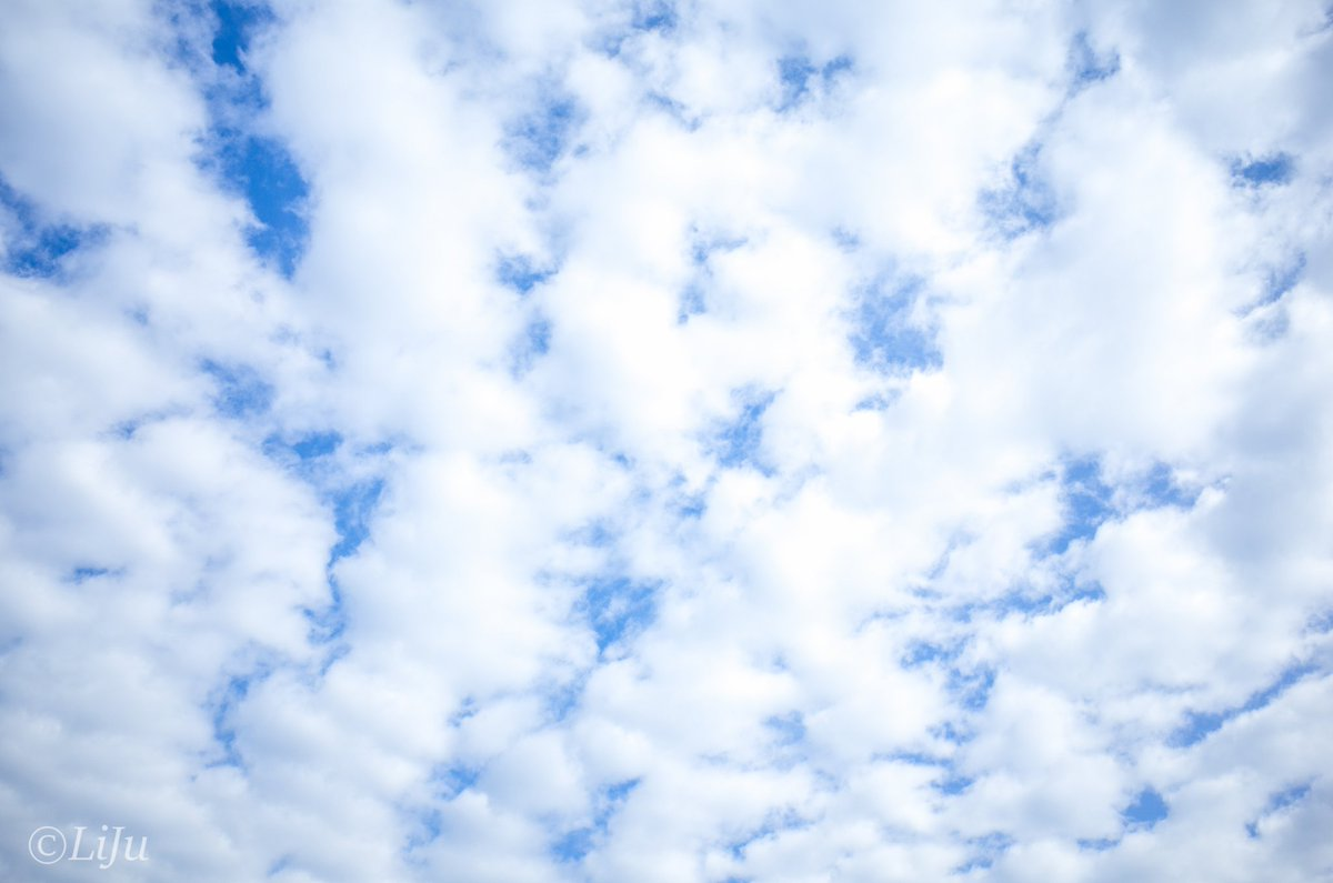 sky-212  #photo #sky #blue #cloud #1日1空