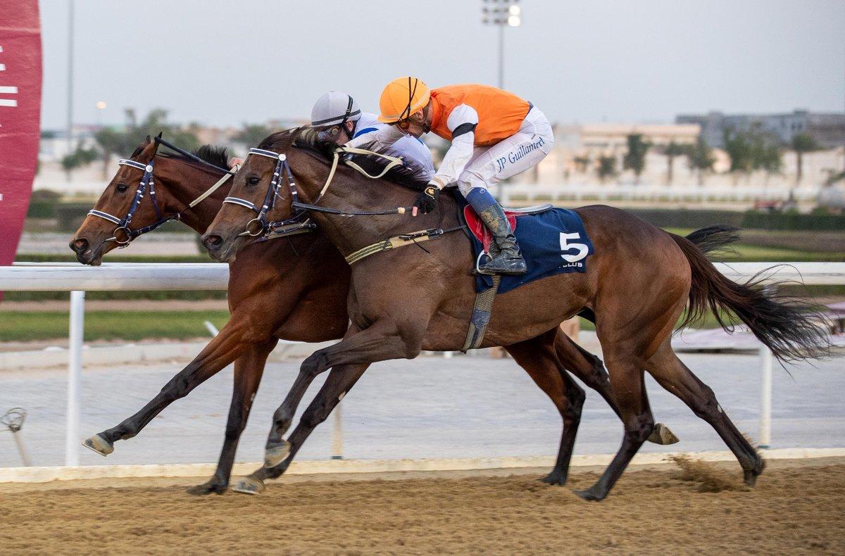 Khalifa bin Sheail Al Kuwari's ROYDEYNA (QA) doubles her tally in a 1700m LB Thoroughbreds (F&M) on dirt at QREC Al Rayyan Park. The Gassim Mohammad Ghazali-trained bay mare of INTENSE FOCUS (USA) was partnered by  #Jockey Marco Casamento  #DohaQatar #الدوحة_قطر #q_rec #QRECpic.twitter.com/Nhmgih2li6