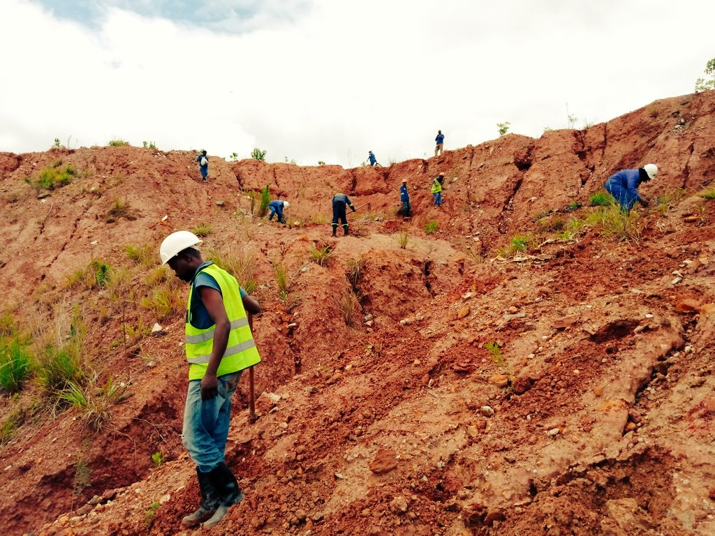 The Plantation.. today we managed to plant 1300 tree seedlings on what used to be a mine dumpsite. The hill wasn't easy to climb but it was worth it!!  #Reforestation #PlantATree<br>http://pic.twitter.com/1QbUHPbK0y