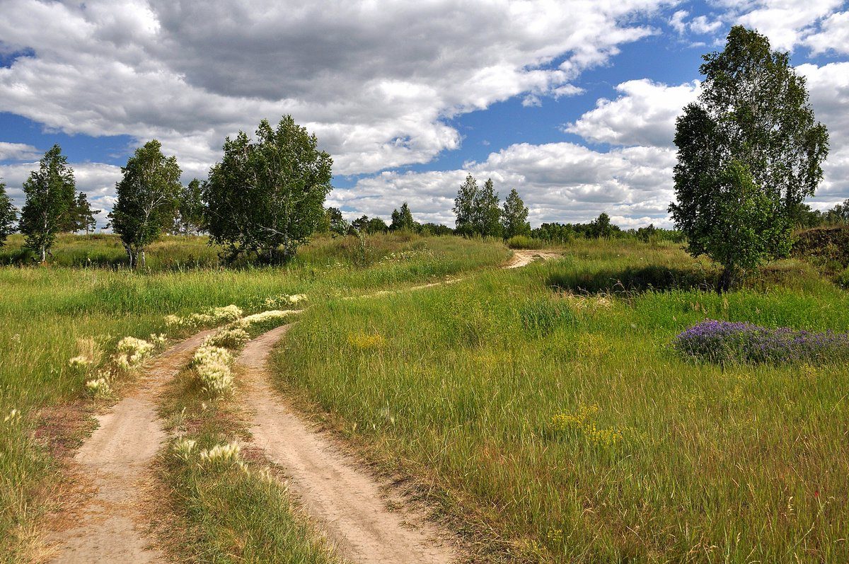 Станица боковская ростовская область фото фоне природной