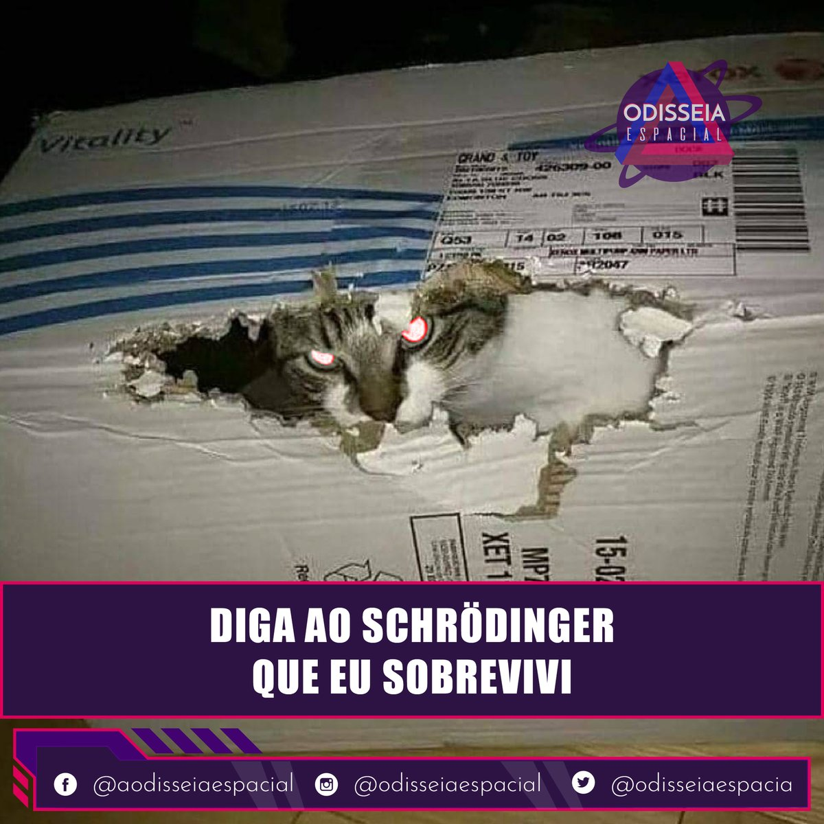Corre Schrödinger ele sobreviveu.  #meme #memeastronomico #memes #memesdeastronomia #memefun #memeengraçado #funny #lolpic.twitter.com/4G10lKA1kX