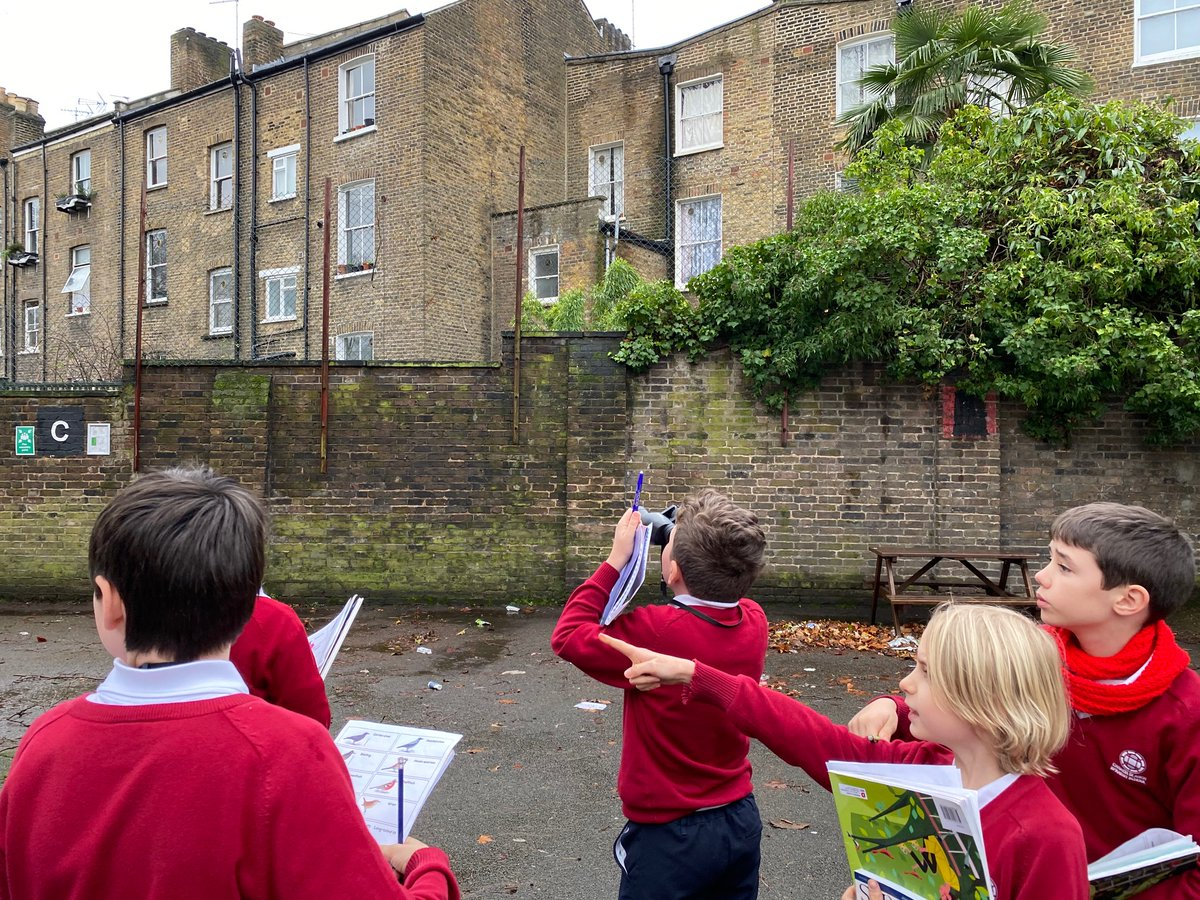 Our primary  Eco-Committee scientists have submitted our results today! #BigSchoolBirdWatch We hope our survey can contribute to the @RSPB_Learning research <br>http://pic.twitter.com/X7e0r8nGVB