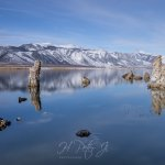 Image for the Tweet beginning: What a thrilling ride #MonoLake