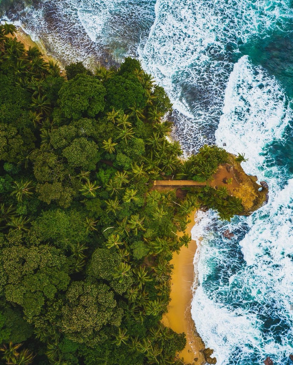 Manzanillo, Caribe Sur, Limón - Costa Rica! Photo by Usama Sajid 🌞 #Beautiful #Amazing #CostaRica #Tiquicia #Natural #Paradise #Beach 🔥🇨🇷🔥
