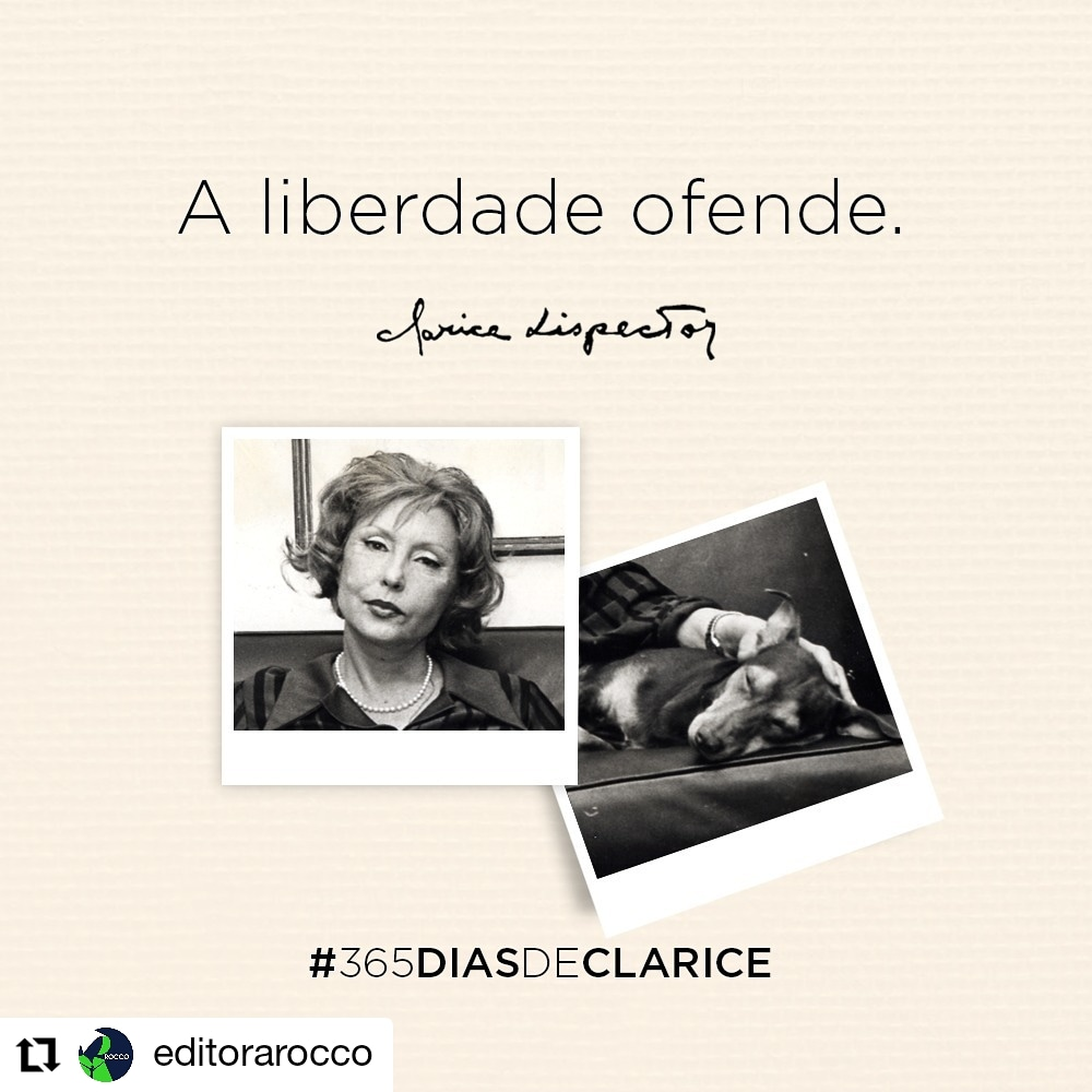RT @docecamille: https://t.co/mqu774v3E8 https://t.co/hg6F38XivL