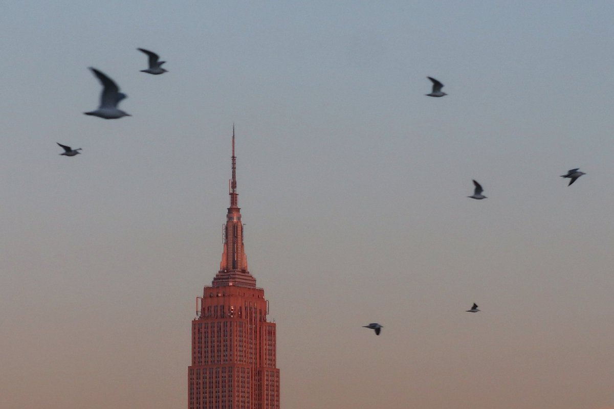 The air force out flying past the Empire State Building at sunset in New York City tonight #newyorkcity #nyc #newyork @empirestatebldg #sunset #hoboken @agreatbigcity
