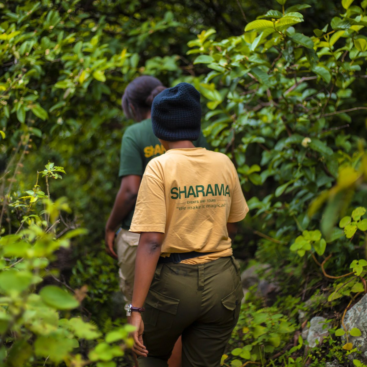 #RwOT Get lost in nature with us 🤩..You'll find yourself!!! #VisitRwanda #Travelwithsharama @sharama_etours  . #rwandalicious #Madeinrwanda #travellingthroughtheworld #travelphotography #nature #adventure #africa #wildlifephotography #safari #femaleguides #rwandatourism https://t.co/uCEvE3siGG