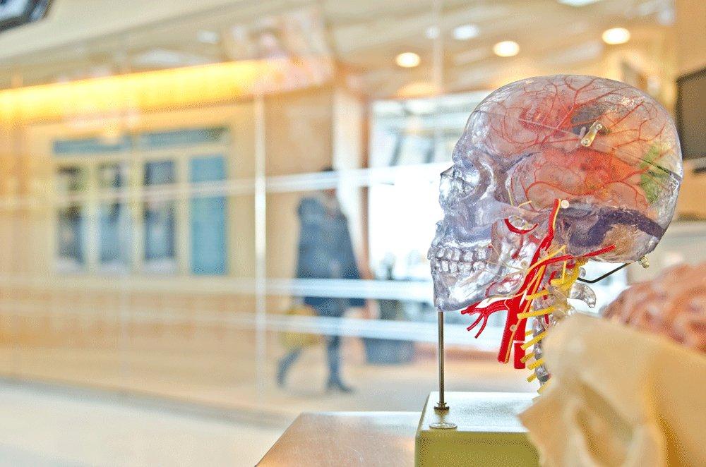 🤔 ¿Te planteas hacer el #doctorado en ámbitos como #neuropsicologia #neurociencia #nutricion o #esalud #ehealth?  ℹ️  Te informamos sobre las líneas #PhD del programa #Salud y #Psicología en @UOCphd   🔗  🔚Plazo: 12/02  #saludconcienciaUOC