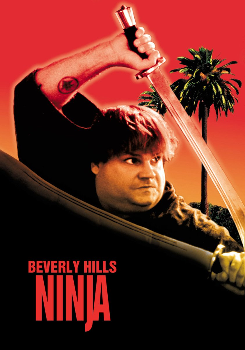 "It's time for Martial Arts Movie Mayhem This month we're watching ""Beverly Hills Ninja"" TODAY from 2-4pm. All are welcome but seating is limited; movie is rated PG-13.  #beverlyhillsninja #movie #martialarts #actionmovie #dobbsferry #dfpl #library #libraries #dobbs #dobbsferrynypic.twitter.com/6pDKOG5ukM"