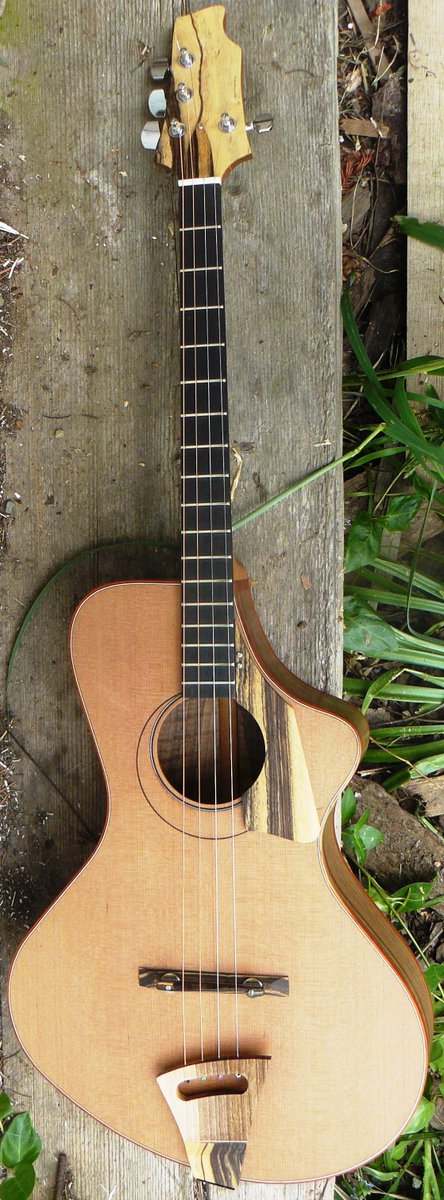 joe Egan custom guitars tenor baritone ukulele