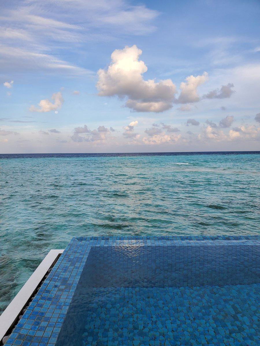 おはようごぜえます😄現地時間は朝7時前です今日はドローンかなんかでの写真撮影してもらった後、無人島へピクニック行く予定です😄海見たらエイと淋しい熱帯魚(Winkか)がいました😊