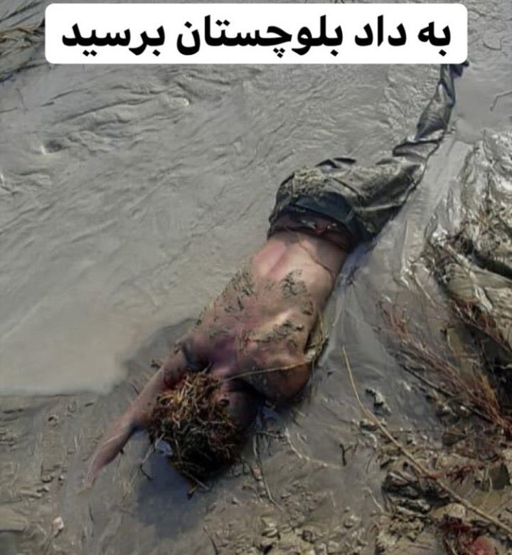 به داد #سيستان_و_بلوچستان برسید مردم مناطق سیل زده دیشب بر بالای درختها خوابیدند، جمهوری اسلامی توان مدیریت کشور را ندارد  #اعتراضات_سراسری  #جمهوری_اسلامی_باید_برود