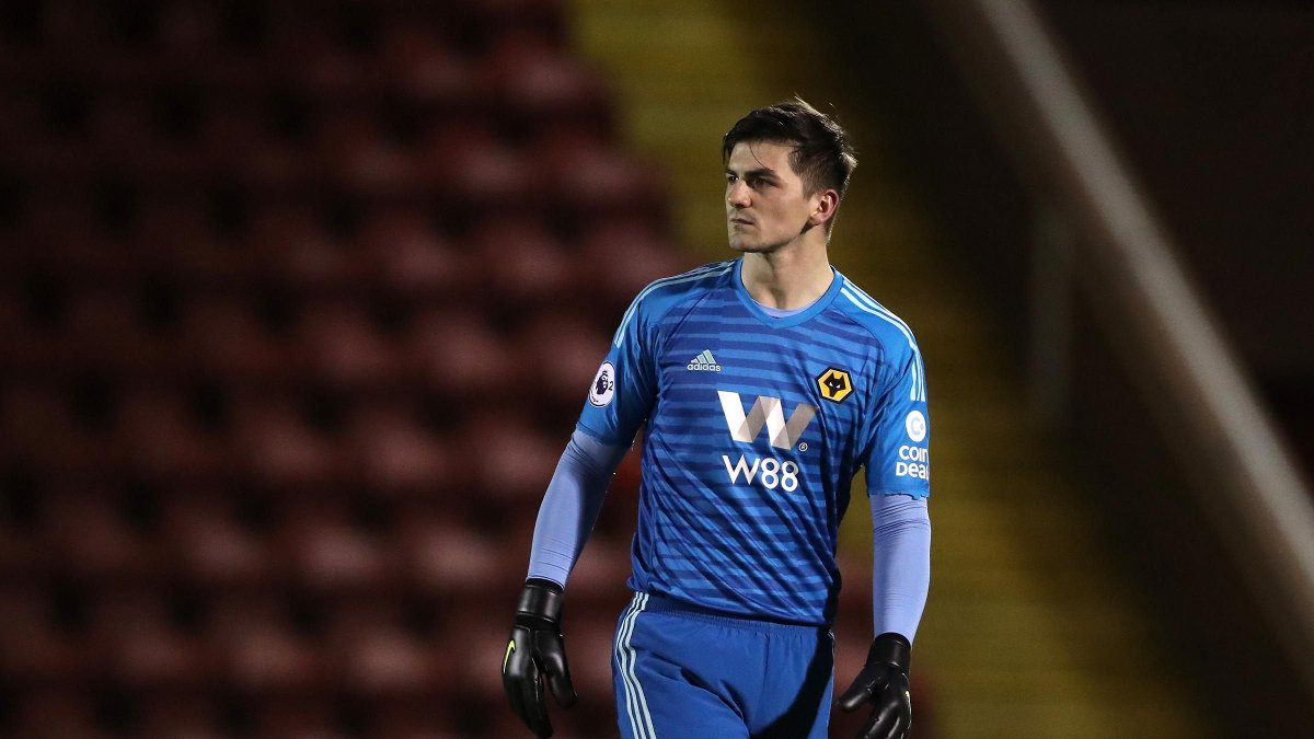 talking wolves on twitter wolves goalkeeper harry burgoyne is weighing up a possible move to tampa bay rowdies in florida where ex wolves defender neill collins is now being assisted by kevin foley wolves goalkeeper harry burgoyne