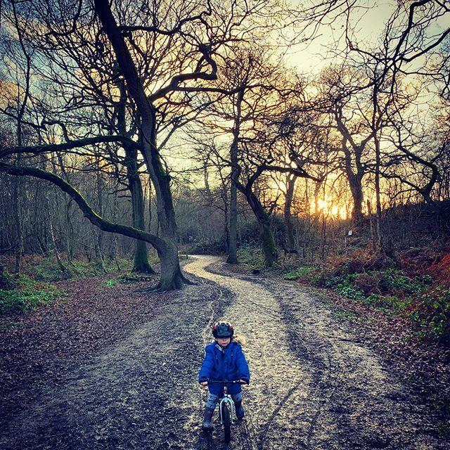 Riding down hill on the @bradwiggins #balancebike was a lot easier than on the way up. #shropshirelad #shropshire #barnaby #countryside #ig_countryside #haughmondhill https://ift.tt/2ReDfJepic.twitter.com/YXA22AKi7g