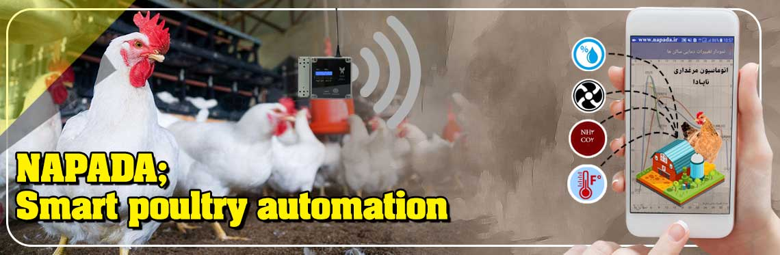Monitoring and controlling environmental parameters such as temperature, humidity, ammonia gas,etc. in a #poultryfarm 24 hours a day with Napada automation and wireless sensors. For a free technical consultation: SMS number+9830006308000005. #Alertis #chicken #smartsystem #sensorpic.twitter.com/gKv8eqg9zI