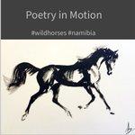 Image for the Tweet beginning: #namibia 's #wildhorses, the Namib's