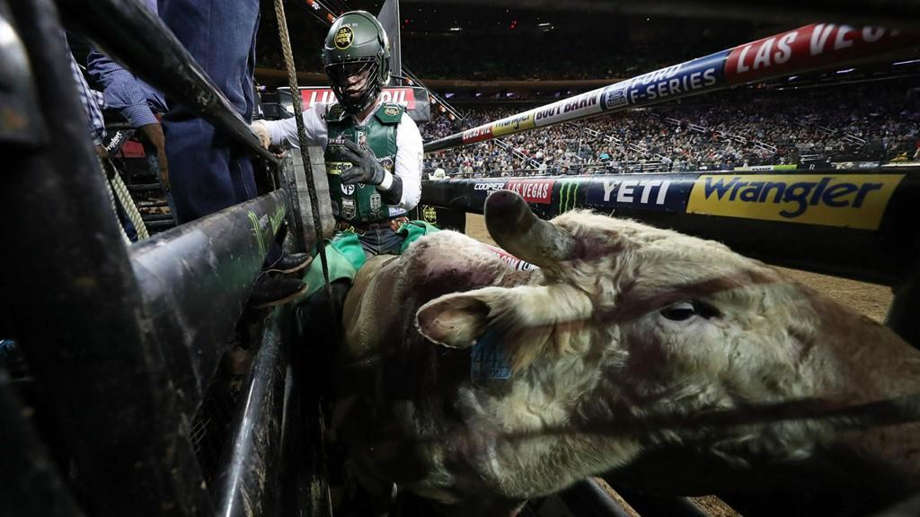 Daylon Swearingen Wins Bull Riding Tournament At Allstate Arena chicago.cbslocal.com/2020/01/12/day…