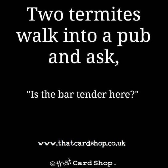 An evening meme to cheer you up from http://www.thatcardshop.co.uk #meme #funny #dailymeme #dailyjokes #eveningfun #thatcardshoppic.twitter.com/DN0D5Kvd0e