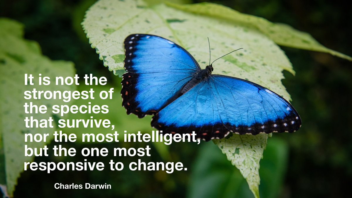 """""""It is not the strongest of the species that survive, nor the most intelligent, but the one most responsive to change.""""- Charles Darwin #MondayVibes #wordswagapp https://t.co/NPTZ0AL0AF"""