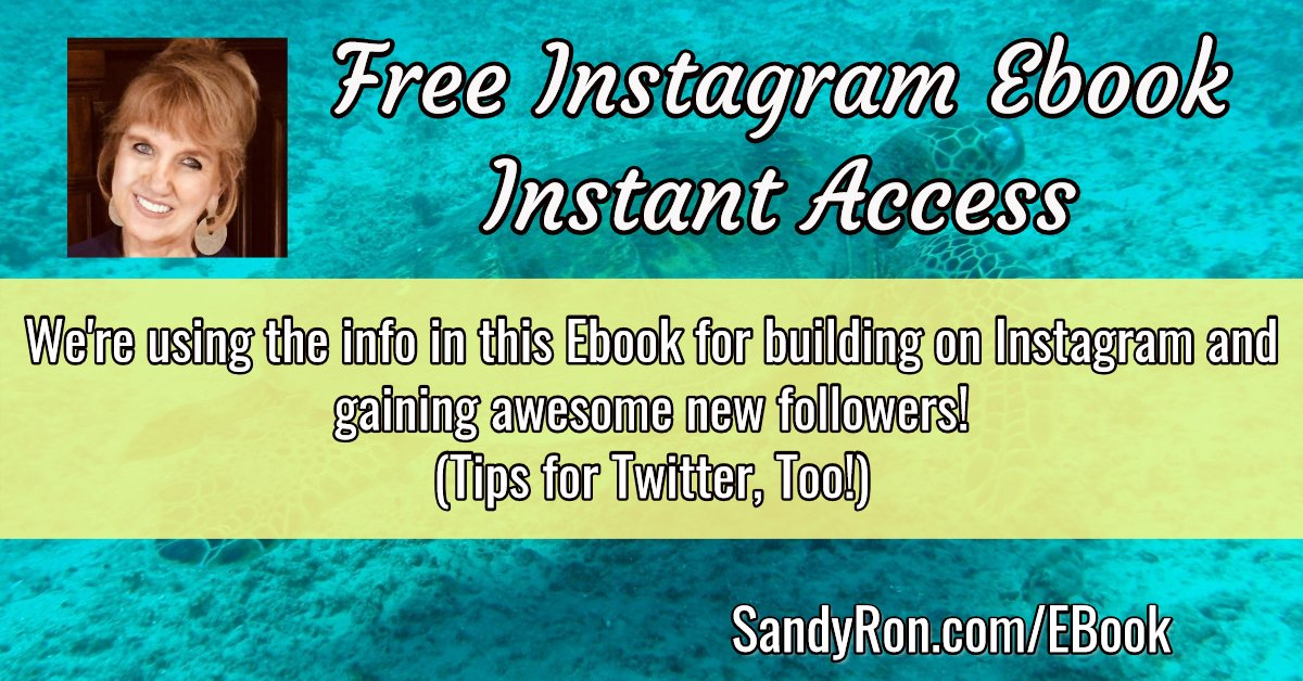 Insta PDF Ebook, packed to the hilt with amazing guidance and tips.  Download here:  http://SandyRon.com/InstaEbook #millionairementor #entrepreneurmind #personalbrandingpic.twitter.com/OBfbztea8g