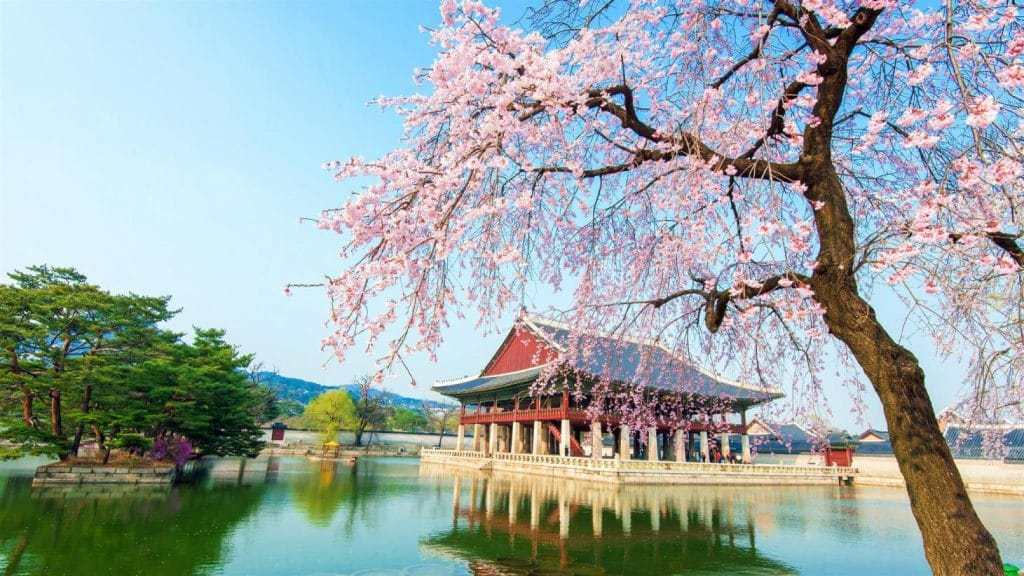 Tour travel Korea selatan 2020 dari Sawiji JogorotoJombang https://bisnis.nusa7travel.com/tour-travel-korea-selatan-2020-dari-sawijijogorotojombang/…pic.twitter.com/GdRgNVQp3W