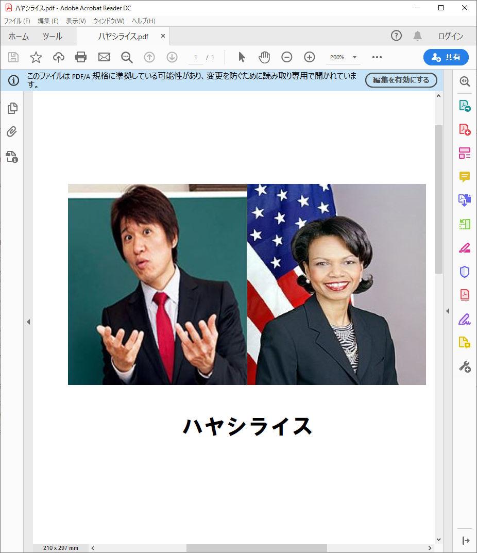 パソコンの中に「ハヤシライス.pdf」ってファイルあったから開いてみたら信じられないほどくだらないものが出てきて笑いが止まらん