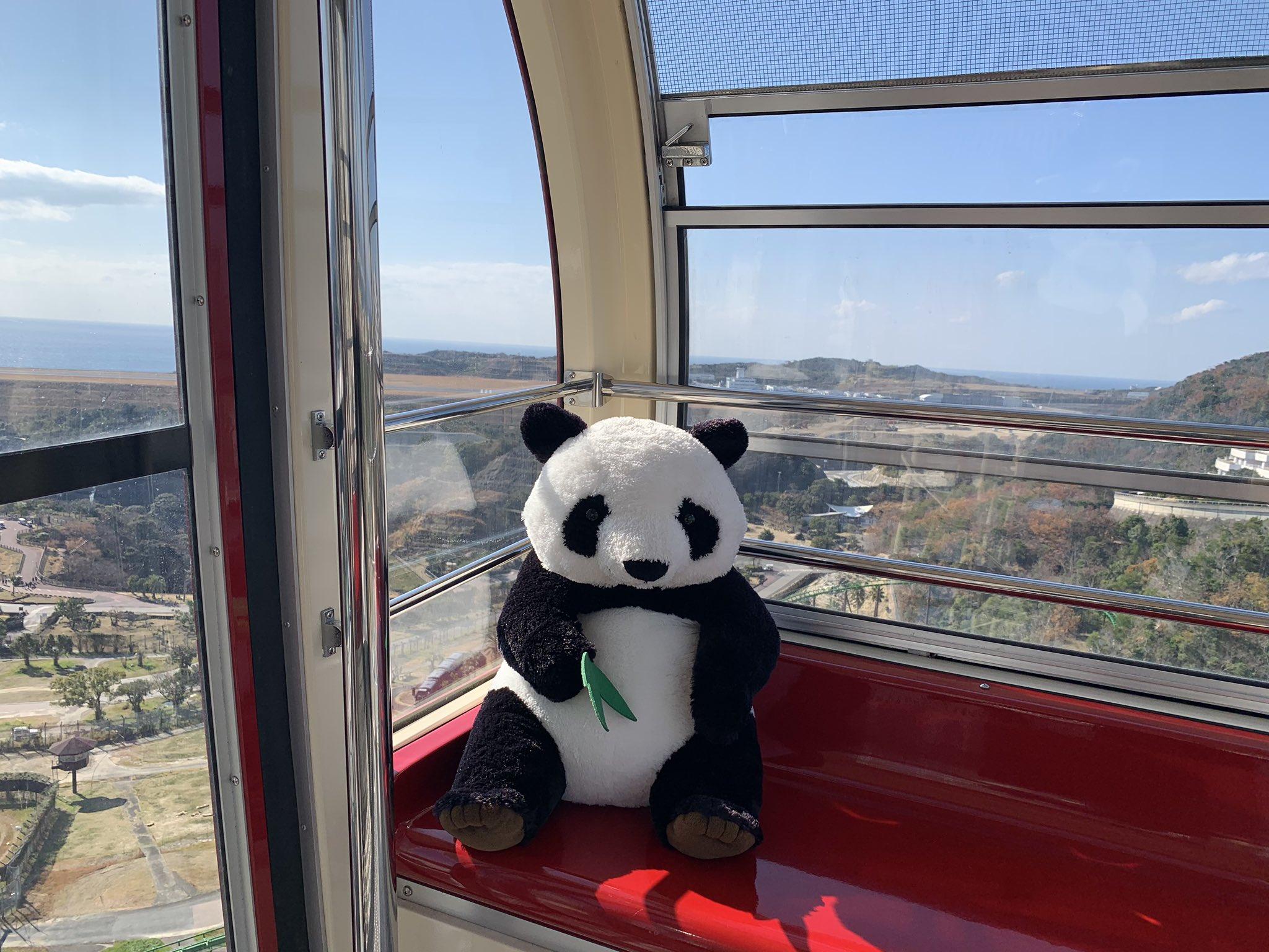 アドベンチャーワールドの観覧車に1人で座ると、問答無用でパンダと個人面談になる