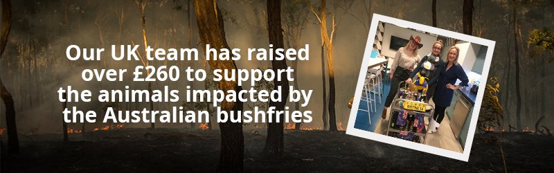 Our UK team has raised over £260 for @WIRES_NSW, to help the animals injured by the #AustralianBushfires. If you use XE to donate to our 3 selected charities, then we'll donate any money that we would have made on those transfers to charity - https://t.co/Xed8piNB9R https://t.co/DfFwefACYP