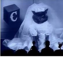 #nationaldressupyourpetday ~ MST3K style... <br>http://pic.twitter.com/3ajsNwHc6G