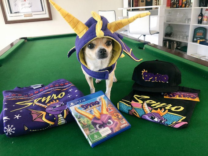 Spyro! Have you done something with your hair?!? How could we miss out on #NationalDressUpYourPetDay  <br>http://pic.twitter.com/vvdqTBi1hG