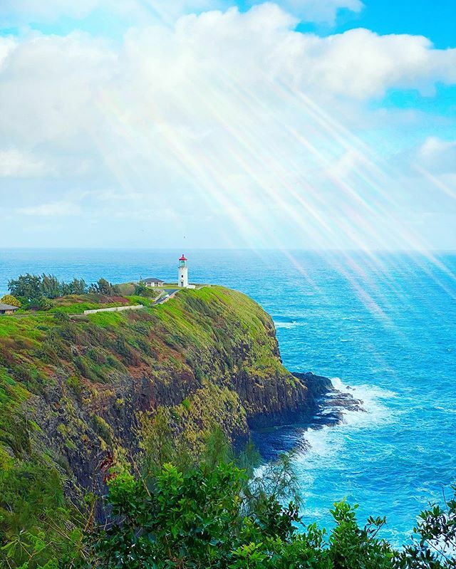 🌈We drove along the north shore of Kauai and found great little stops, like this gem, the Kilauea Point Lighthouse! ☀️ ☀️☀️ 🌺🌺 🌈🌈 #kauaiadventures #kauai #kauaihawaii #kauailove #kilauealighthouse #kauaidrive #darlingescapes #traavia #travelbegin…