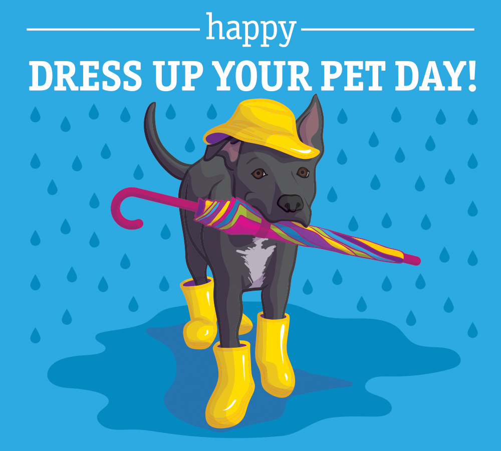 #DressUpYourPetDay Dust off that cute costume from Halloween because it was just TOO adorable. Dont forget to share your photos with us!