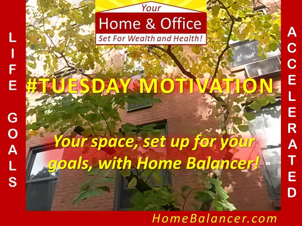 2020 Your Home/Office!  Visit http://bit.ly/2QDHlKn #alwayslearning #millionairementor #beyourownboss #TuesdayMotivation #ambition #BusinessStrategy #BusinessIntelligence #DigitalMarketing #design #influencermarketing #business #homeimprovement #House #NewYearsResolutionpic.twitter.com/T95r1PkLLH