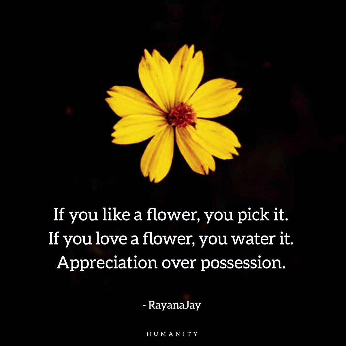 Appreciation  #appreciation #gratitudequotes #joy #sparkjoy #joyful #joyfulheart #gratitude #gratefulheart #gratefulmindset #thankful #thankfulquotes #life #living #thankfulforyou #gratefulness #gratefuleveryday #gratitudeattitude #attitude #trotter <br>http://pic.twitter.com/WCwir0zglh