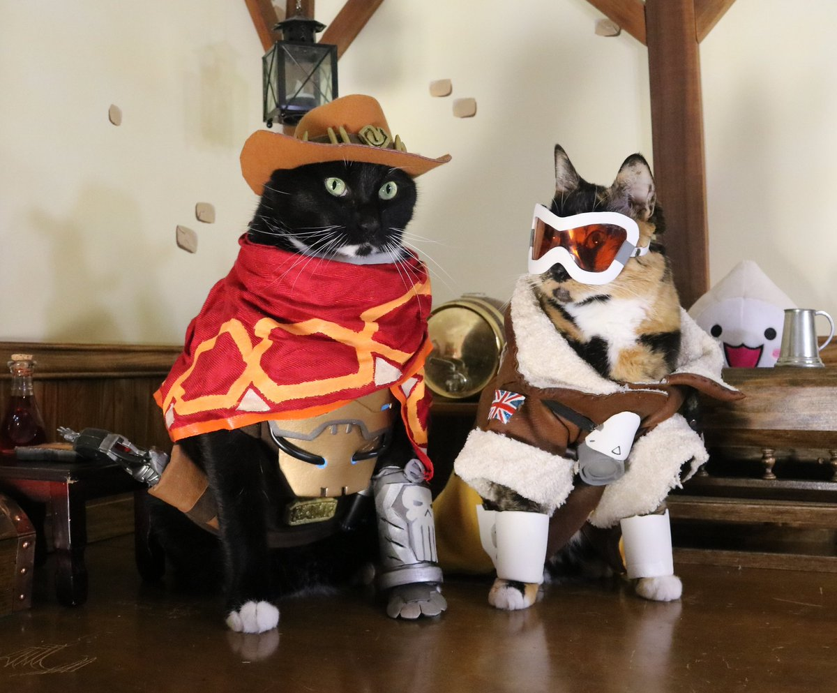 Costumes? No problem. It's getting them to play tank/support that's hard.  #Overwatch  #NationalDressUpYourPetDay  https:// twitter.com/CamillaFan96/s tatus/1217199221037772801  … <br>http://pic.twitter.com/VzhPMHvWd8