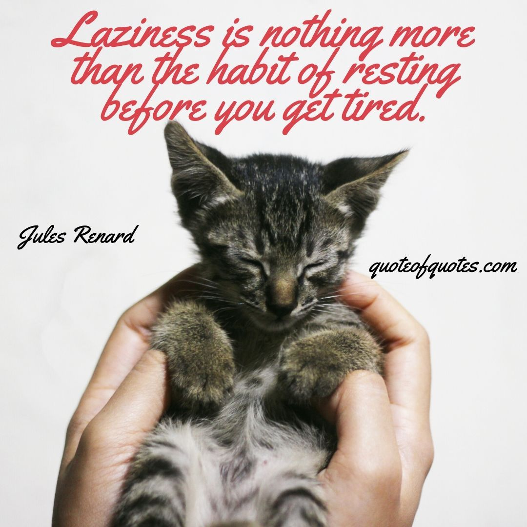 For more visit http://quoteofquotes.com #cat #kitty #lazy #quote #quotes #quotesaboutlife #dailyquotes #lazysunday #bored #wisdom #love #cat #cute #catsofinstagram #sunday #cats #instagram #lazyday #weekend #meme #photography #memes #meow #FolloMe #follow #inspire #motivation