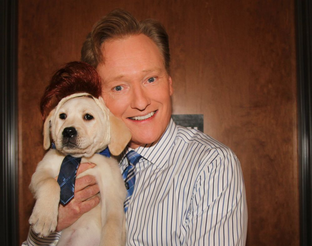 Just in case you need some inspiration for #NationalDressUpYourPetDay. <br>http://pic.twitter.com/gCVz0AYz3D