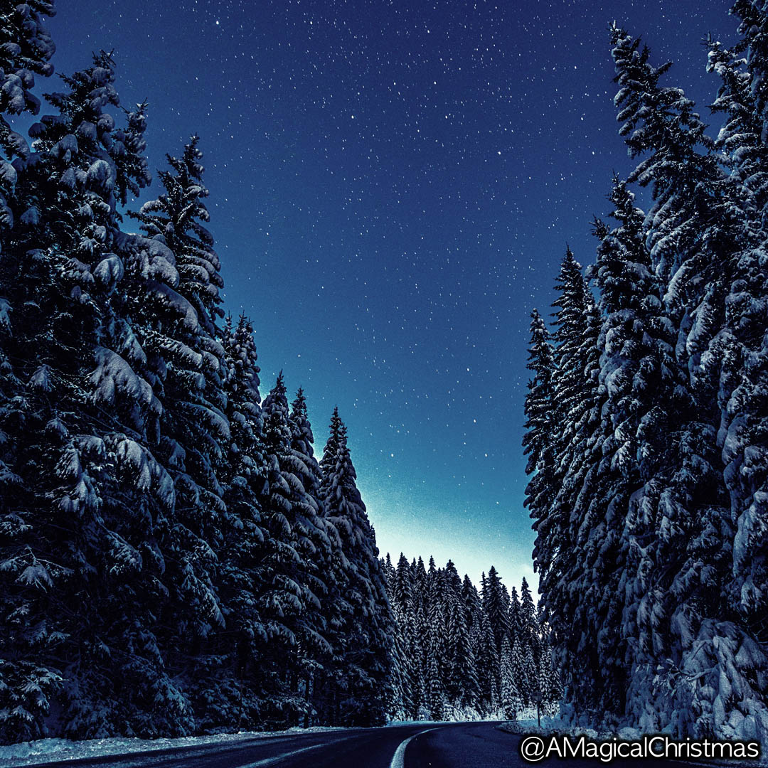 Awesome #winter picture!  #christmassy #christmasmood pic.twitter.com/kA0uu5Ye4p