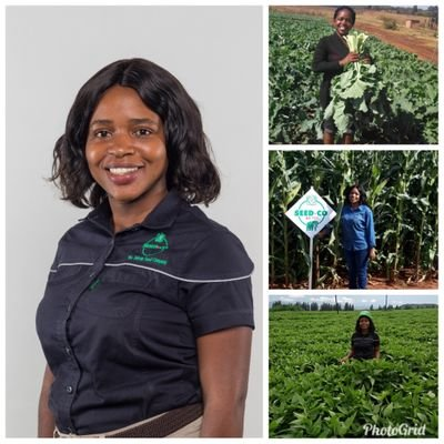 #CapitalCrunch  Catch @tarimanamike at 11:00 am for #WomanToWoman as she hosts newly appointed Head of Agronomy at @SeedCoGroup; @WendyMadzura.  Tune in & follow the conversation.  Only on #HararesHeartBeatpic.twitter.com/oBfJ9hTYGI