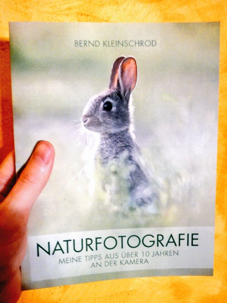 Neue Zuglektüre: Bernd Kleinschrod - Naturfotografie - Meine Tipps aus über 10 Jahren an der Kamera. Nettes kleines Büchlein... pic.twitter.com/gnkfFyhRoJ