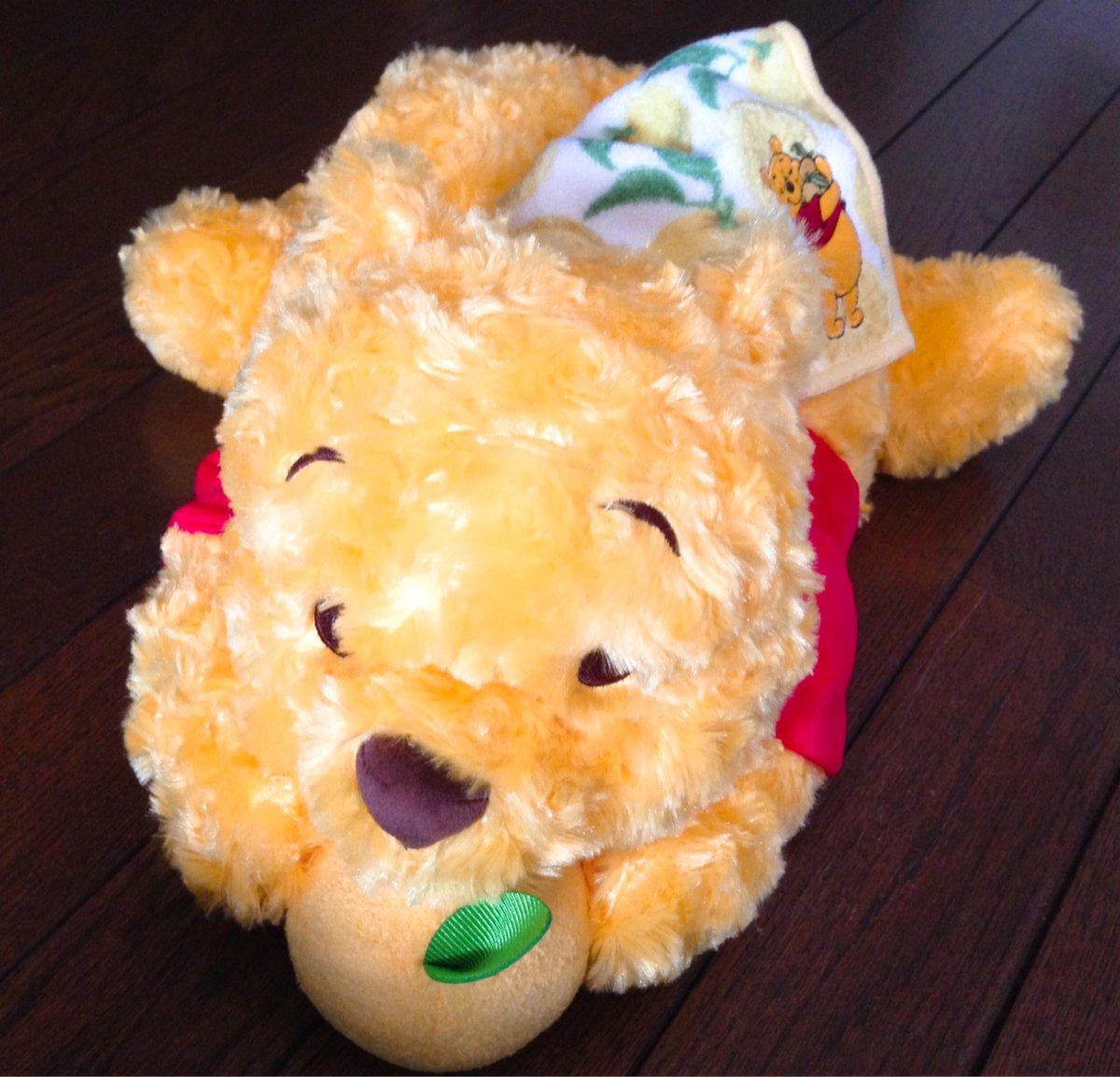 柚子プー癒されまくりですよもふもふだし!♡(*´ω`*)pic.twitter.com/RjrViPRTsX