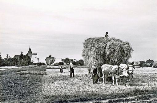 "Ostfildern-Nellingen wird 900 Jahre alt: Das einstige ""Nallingin"" feiert Jubiläum http://bit.ly/2Ts1hTUpic.twitter.com/DtSbkg68w0"