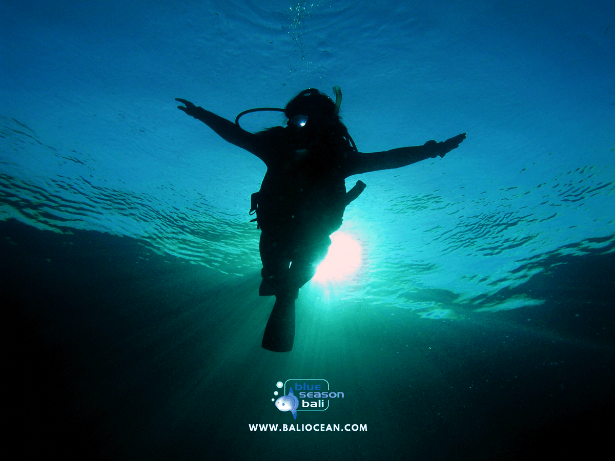 Spread your wings and dive away. #diving #divingtrip #divinglife #divingboard #divingdeep #divingwatch #divingisfun #divingindonesia #divingcatch #Divingin #divingday #divingmagazine #divingcenter #divingtime #divingbali #divingphoto #divinglicious #divingspot #divinggirlpic.twitter.com/9dp4tG8pNc