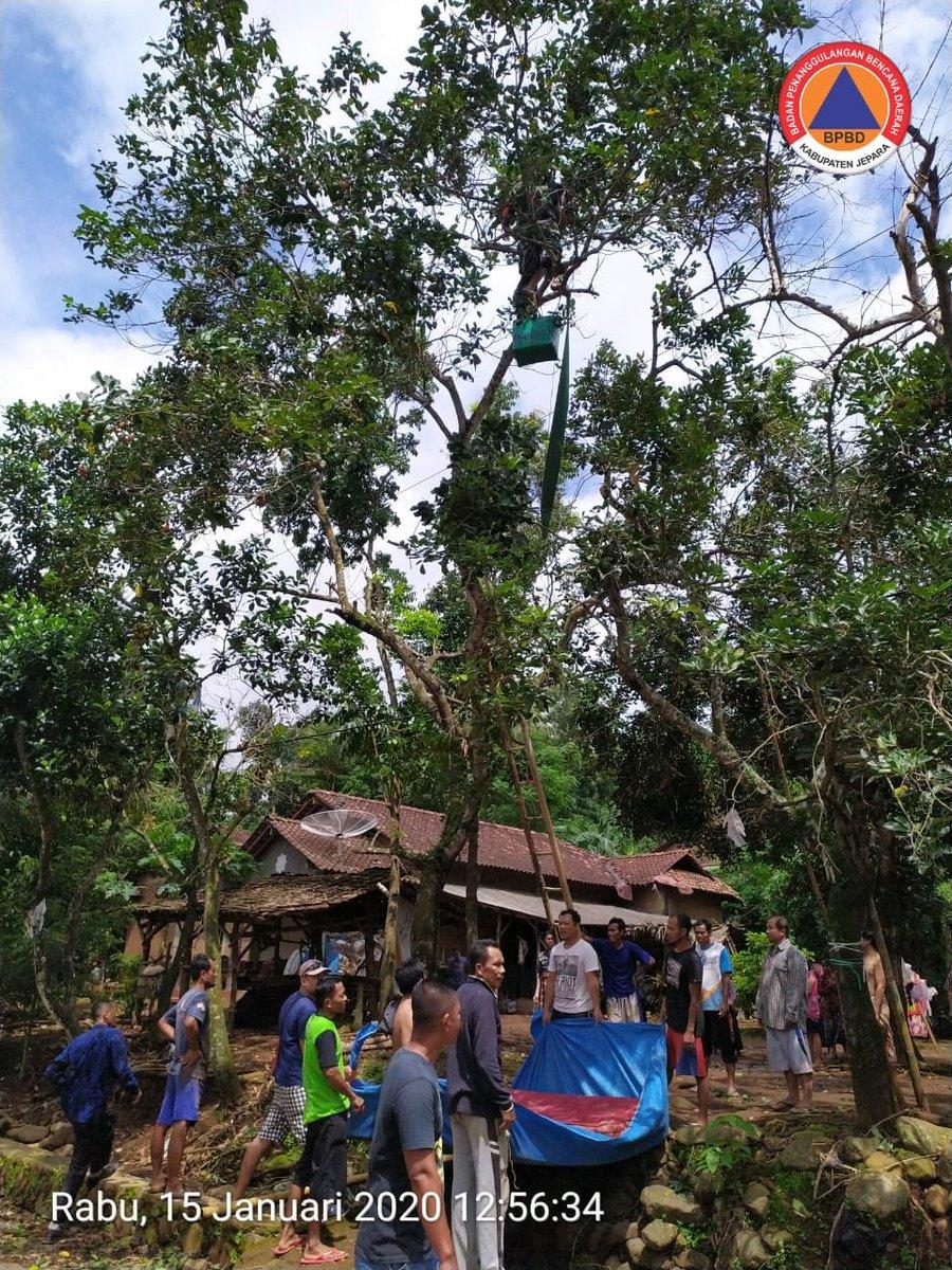 Pertolongan & evakuasi orang tersengat listrik di Ds. Srikandang, Bangsri, Jepara,  an. M. ADI SUSANTO warga RT 01/02 desa setempat pada Rabu, 15 Januari 2020. Korban SELAMAT. 1  @BNPB_Indonesia @bpbdjateng @ganjarpranowo @jeparakabgoid @masandijepara @arwinbpbdjpr @JeparaHariIni