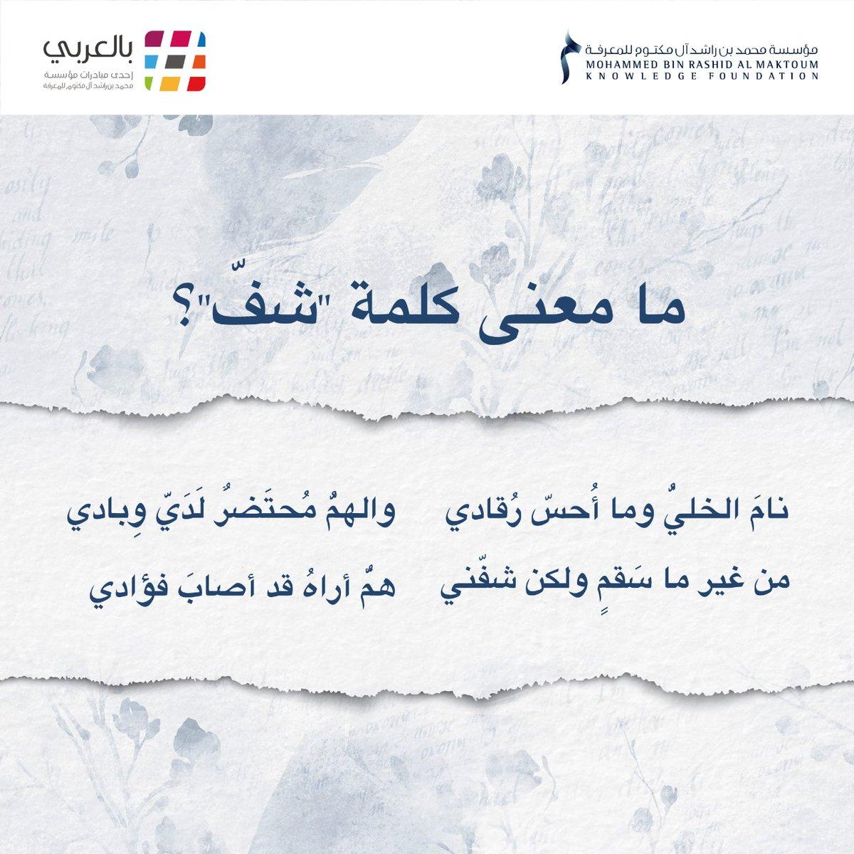 استبيان اسم تداخل معنى كلمة بيتش بالعربي Dsvdedommel Com