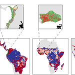 Image for the Tweet beginning: New #openaccess paper: Tropical mammals
