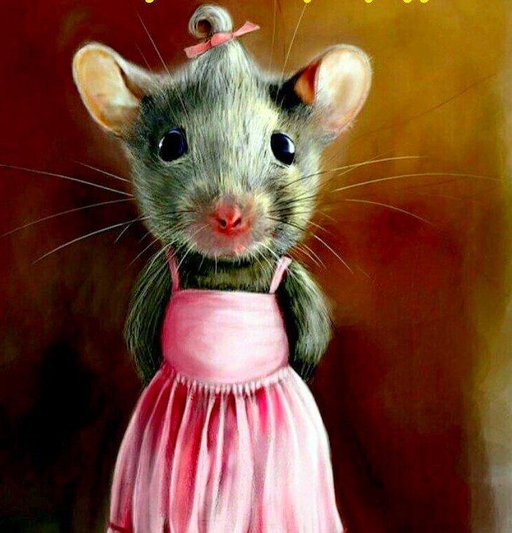 приколы с мышками картинки сделали