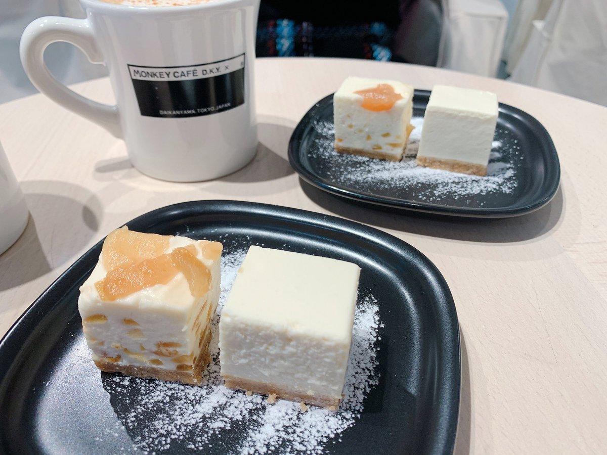 代官山の【Monkey Cafe】のチーズケーキががもちっとした柔らかさで超絶美味いwwwww